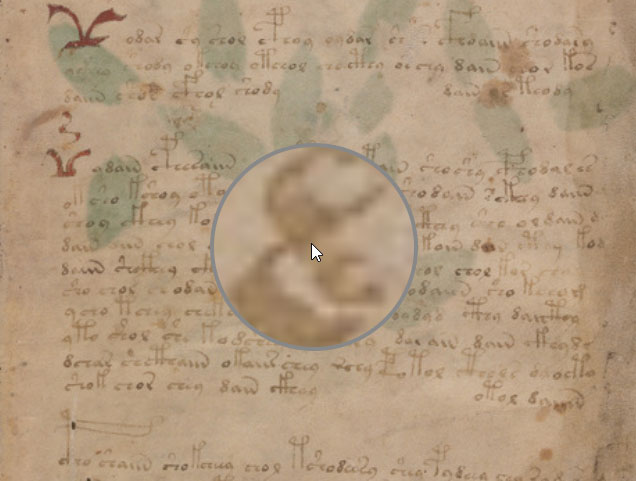 Voynich Manuscript Viewer at Voynich Ninja