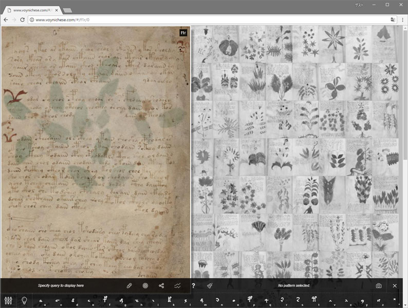 Voynich Manuscript Viewer at Voynich Project