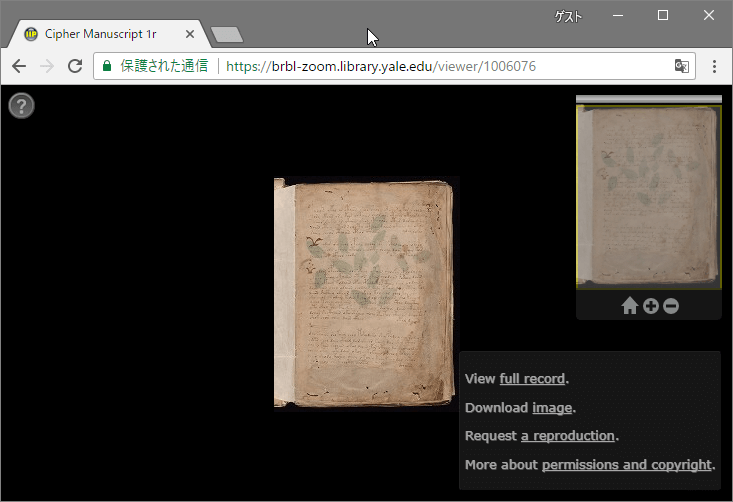 Voynich Manuscript Viewer at Yeal